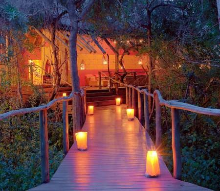 jacis-tree-lodge-walkway-590
